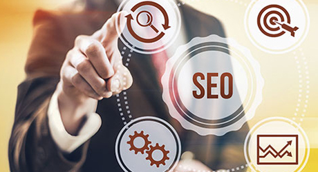SEO Programs Offer